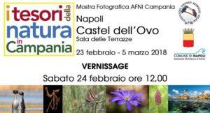 I tesori della natura in Campania