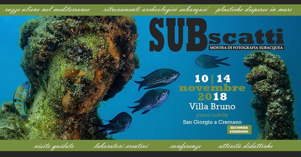 Subscatti 2018, di Pasquale Vassallo la foto in copertina