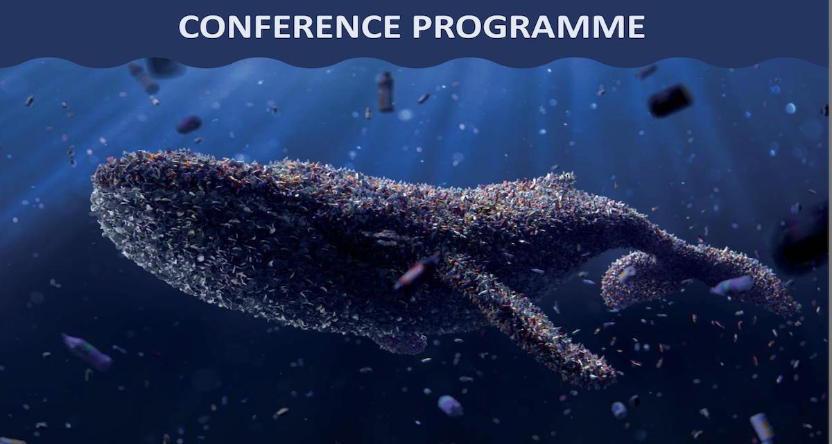 Capri e Microplastiche, esperti da tutto il mondo dal 15 al 18 settembre