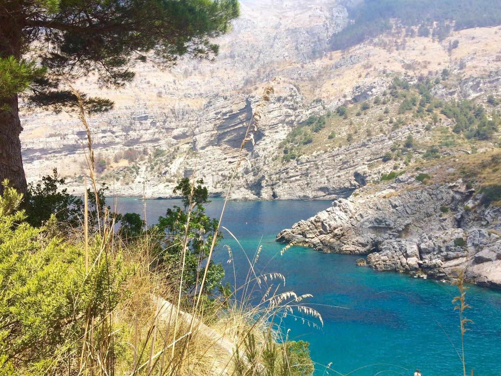 AMP di Punta Campanella candidata Green List IUCN